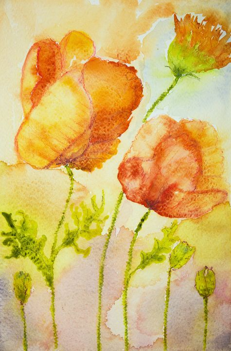 Impression of poppies - BRISTE