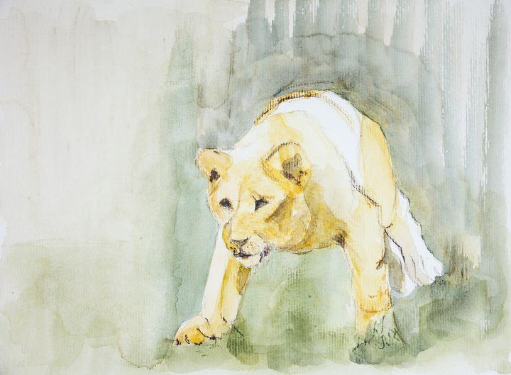 Lioness sneaking towards a prey. - BRISTE