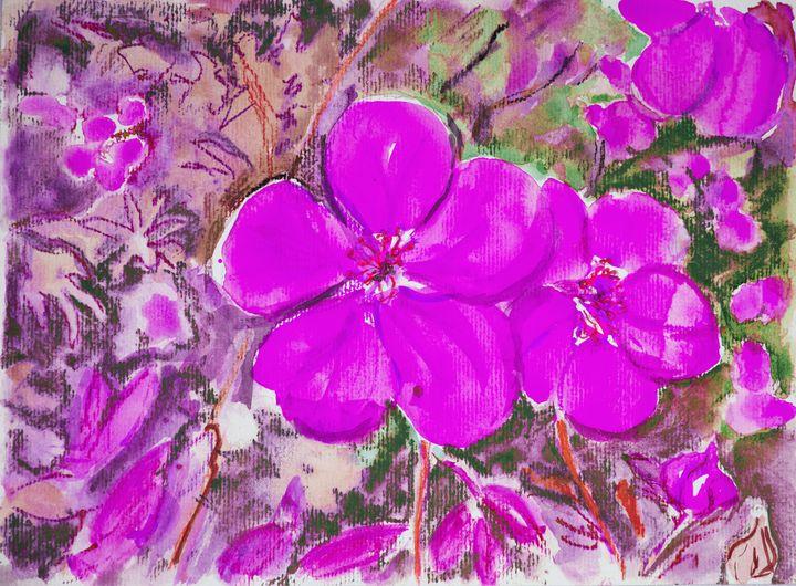 Pink violet. - BRISTE