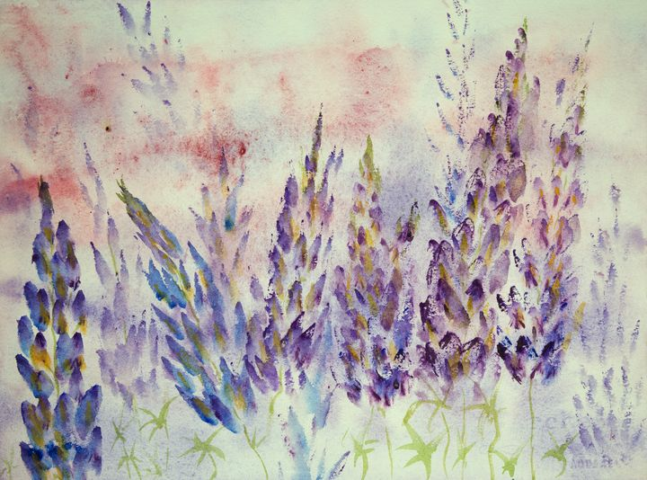 Impression of blueish lupines - BRISTE