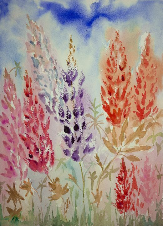 Impression of red and purple lupines - BRISTE