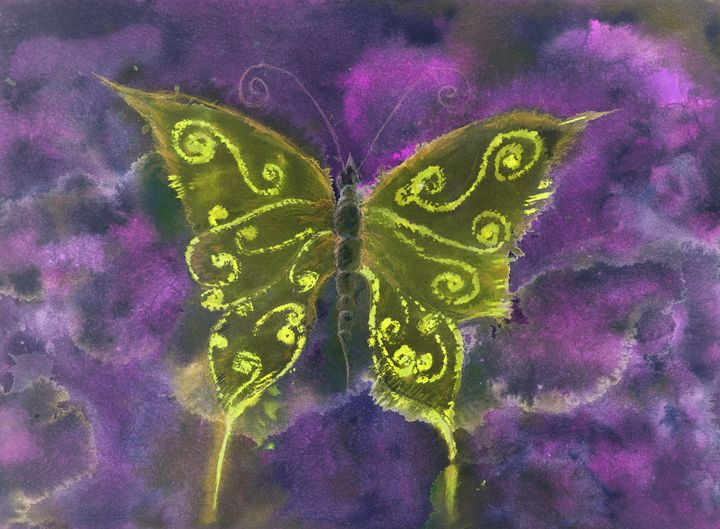 Yellow and orange butterfly - BRISTE