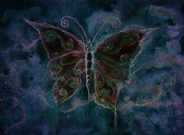Delicately multicolored butterfly - BRISTE