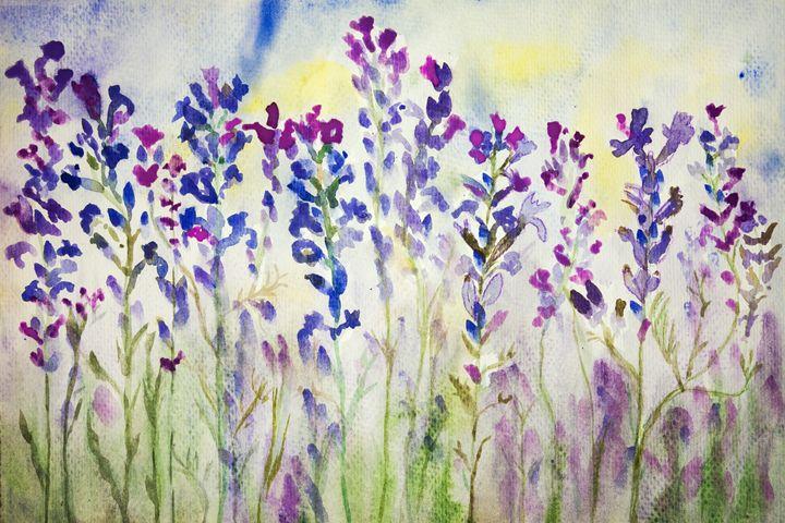 Lavender in the field. - BRISTE