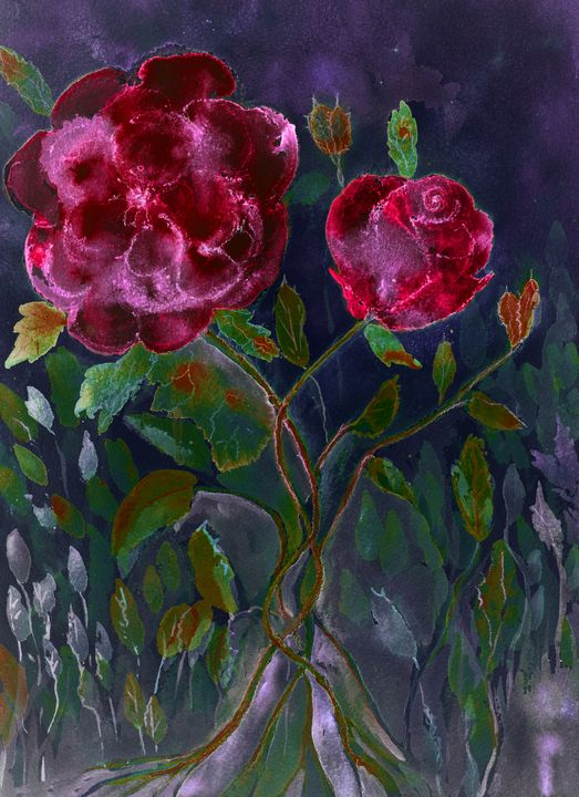 Roses popping out of a night sky. - BRISTE