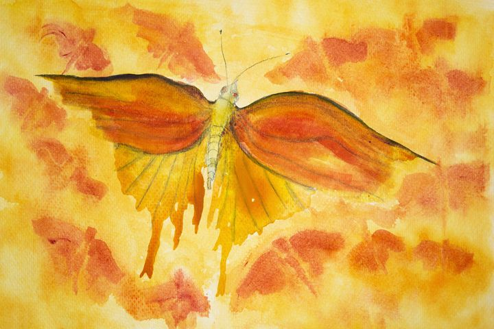 Orange butterfly - BRISTE