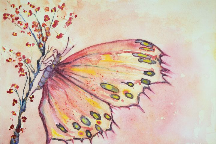 A multicolored butterfly sitting - BRISTE