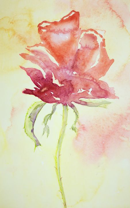 Side view of a naive rose. - BRISTE