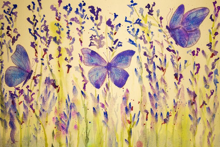 Field of lavender with butterflies. - BRISTE