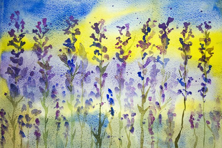 Lavender with blue and yellow backgr - BRISTE