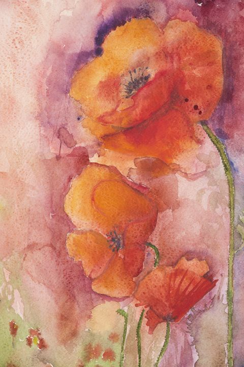 Poppies on a pink background - BRISTE