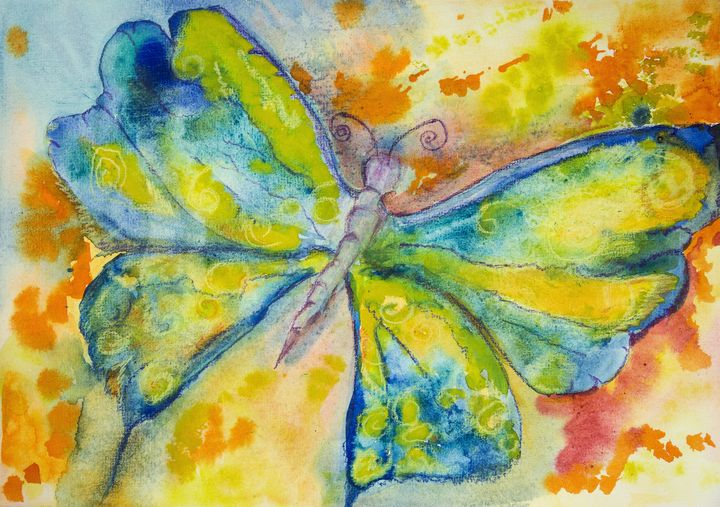 Blue and yellow butterfly with orang - BRISTE