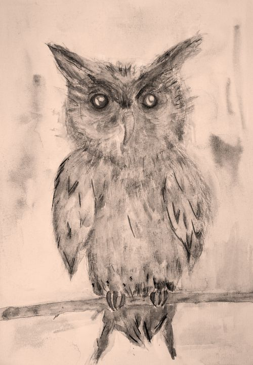 Owl in sepia tones on a branch. - BRISTE