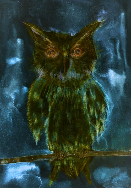 Owl on a branch in the night - BRISTE