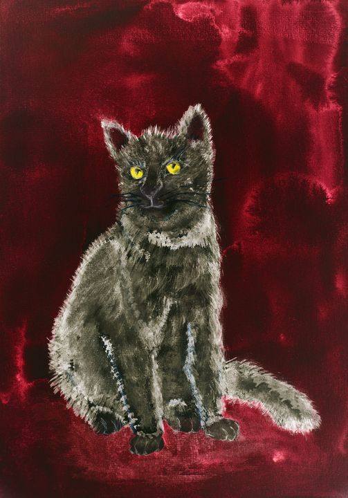 Grey kitten on a whine red backgroun - BRISTE