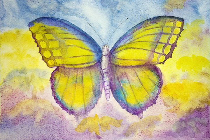 Yellow and blue butterfly. - BRISTE