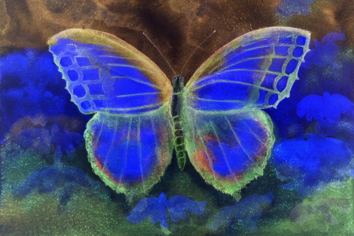 Butterfly in a phantasy world. - BRISTE