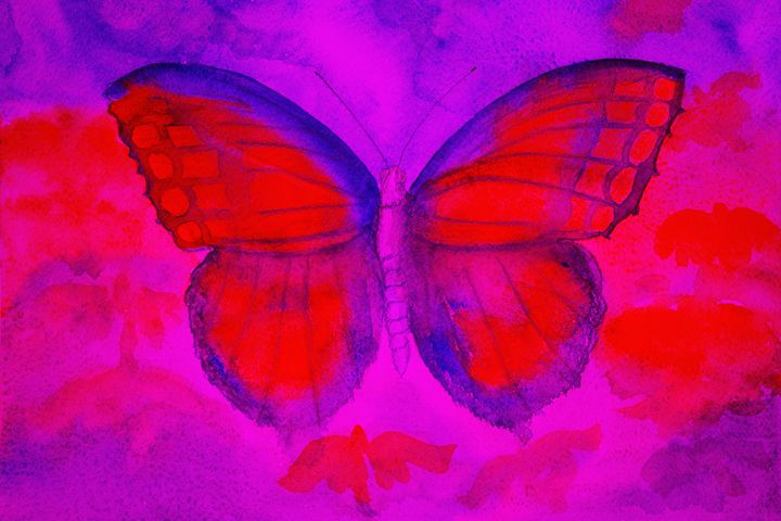 Butterfly in a strange colored world - BRISTE
