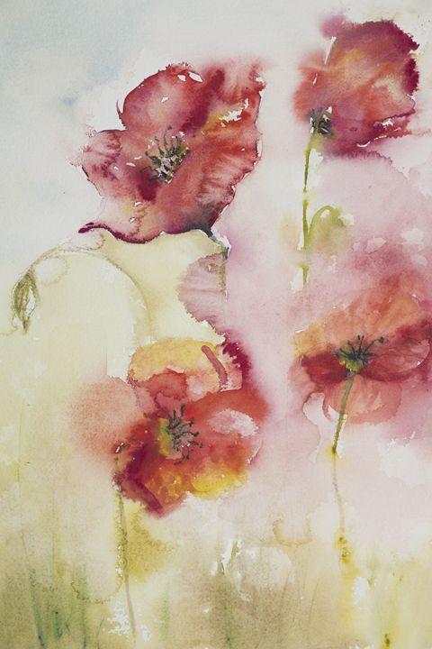 Poppies in the mist - BRISTE