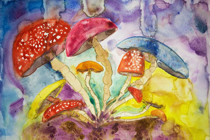 Psychedelic mushrooms in insomnia. - BRISTE