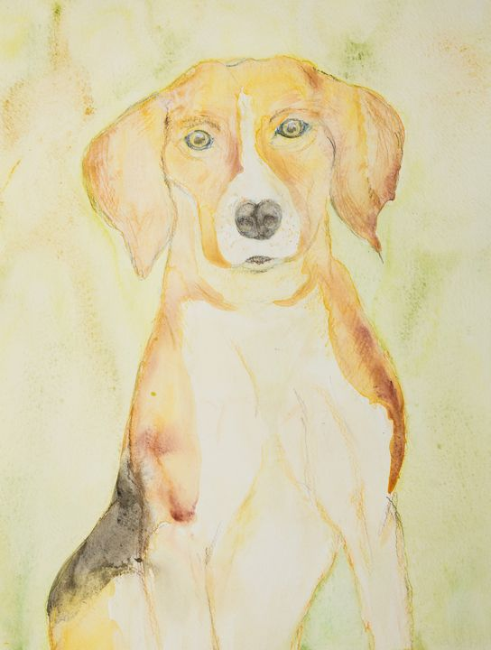 Beagle portrait on a goldgreen backg - BRISTE
