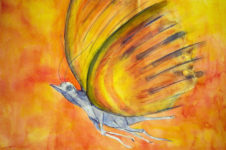 Phantasy butterfly. - BRISTE