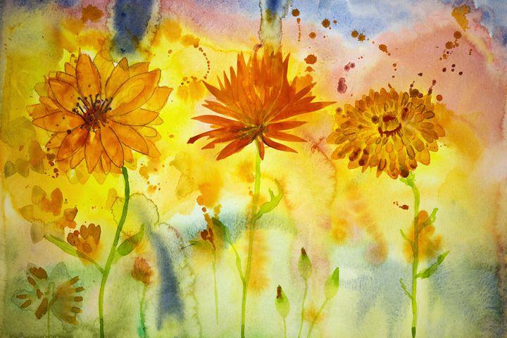 Three different marigolds. - BRISTE