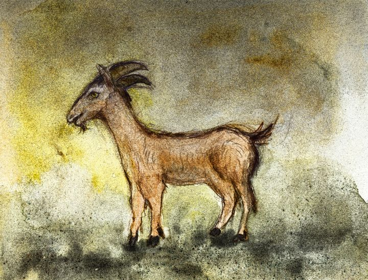 Goat painted in a rustic way. - BRISTE