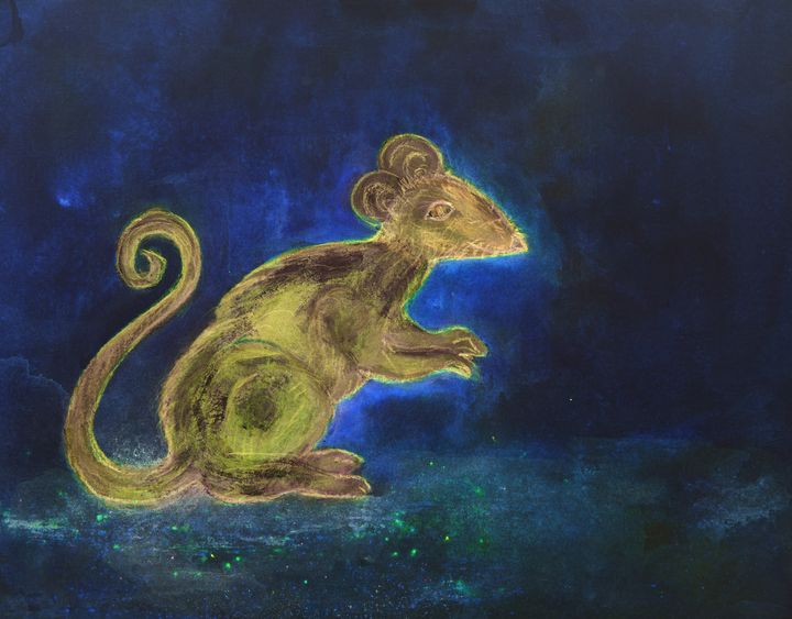 Rat at night on a blue background. - BRISTE