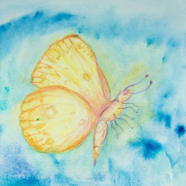 yellow and orange flying butterfly - BRISTE