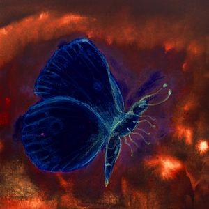 Blue flying butterfly in a bright
