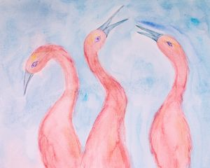 Three pink ibis on a blue background