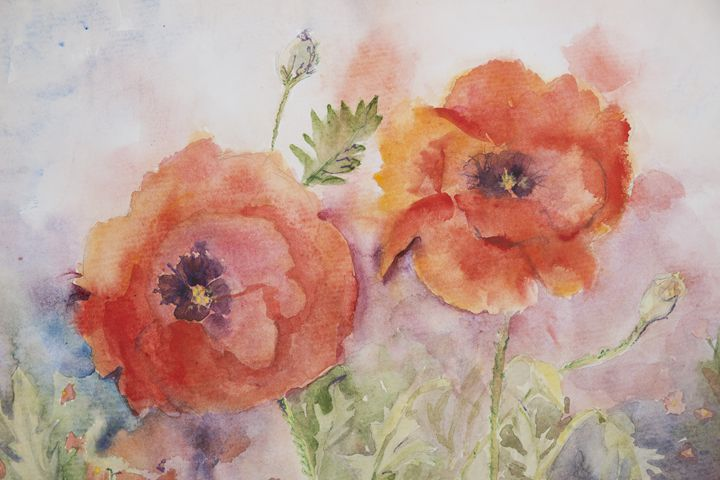 Two poppies - BRISTE