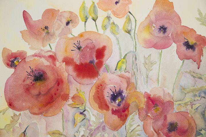 Naive poppies - BRISTE