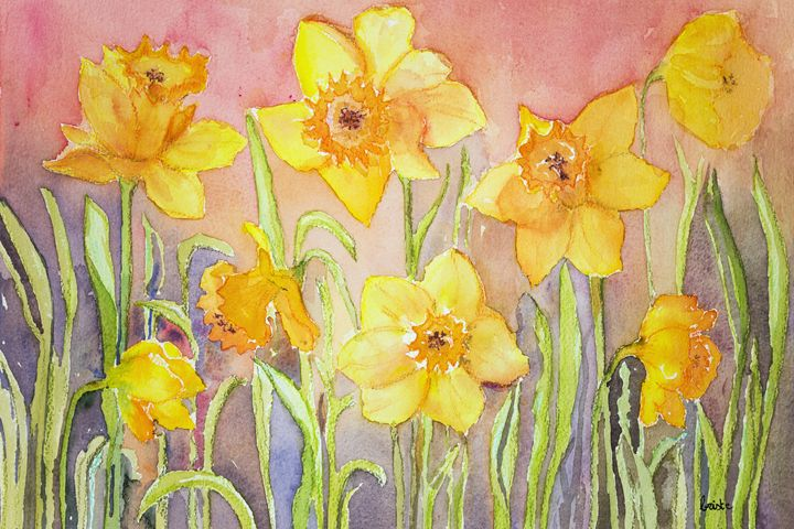 Yellow narcissus in a grassy environ - BRISTE