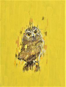 Mom's Owl