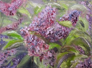 Lilac - Pangol Art