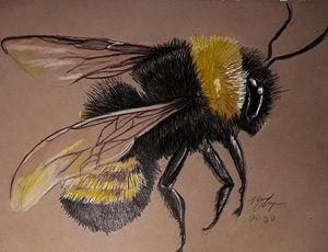 Beezzbeauty