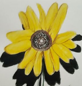 Sweet Daisy's Sunflower
