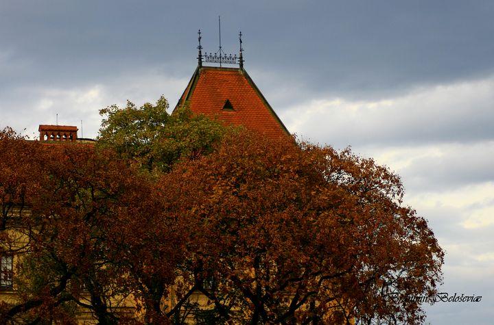 Autumn in city - branimirbelosev
