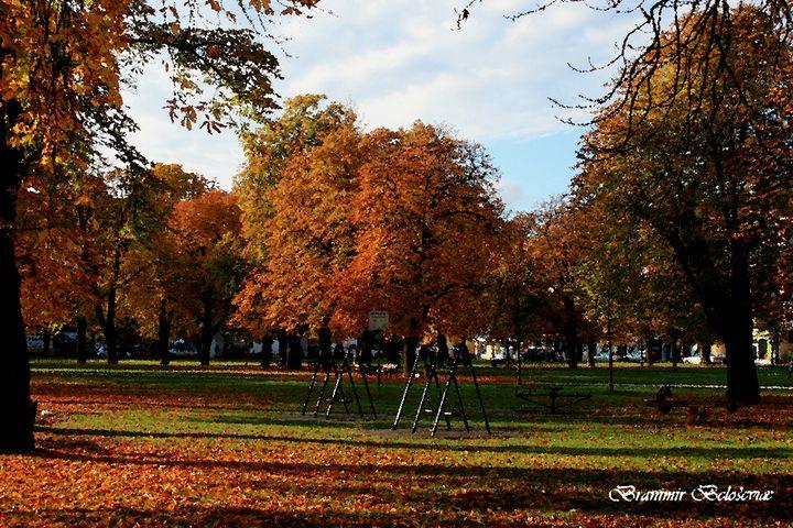 Park in autumn - branimirbelosev