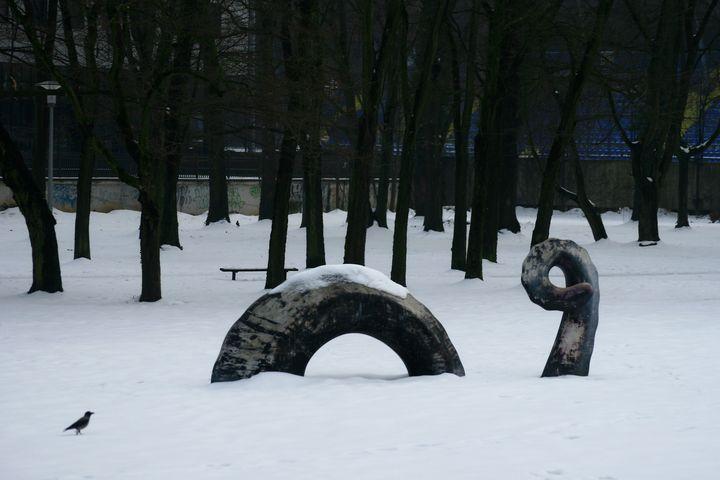 Dragon in the snow - branimirbelosev