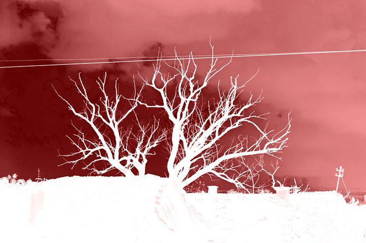 Tree red negative - branimirbelosev