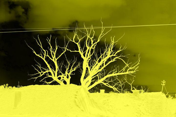 Negative yellow - branimirbelosev