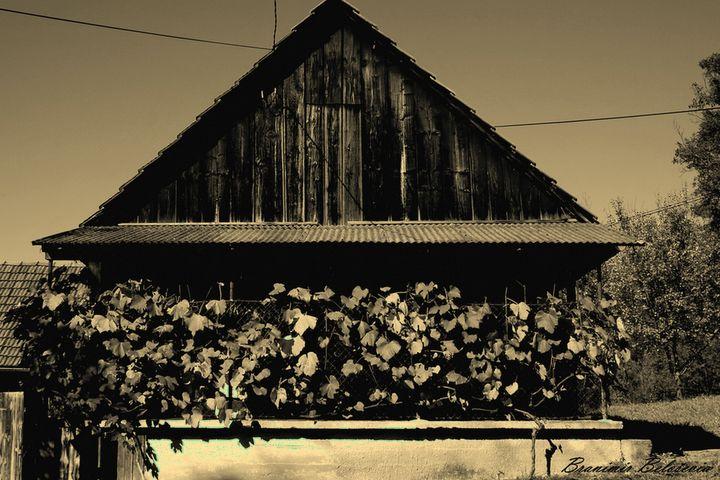 House in autumn - branimirbelosev