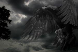 Brooding Giant Eagle