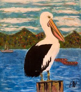 Meditating Seagull