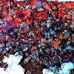 Last Marks of Winter - James Schultz