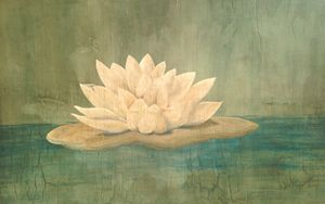 Antique Water Lily