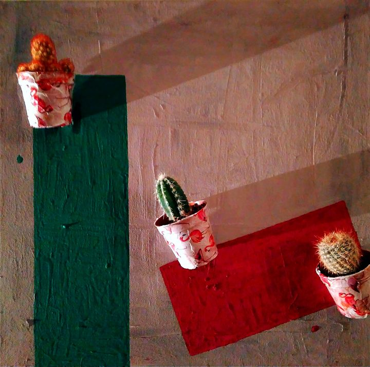 Cactus on canvas - Tobinia